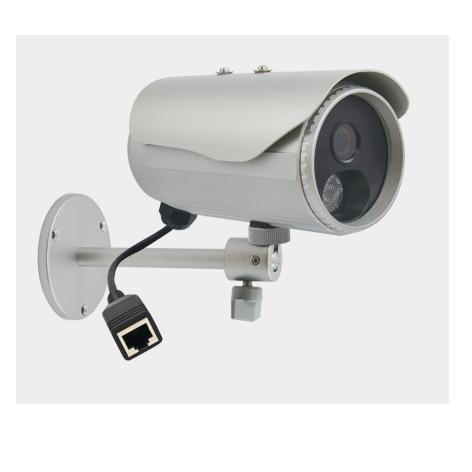 Camera Ip Acti D31